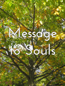 Message to Souls